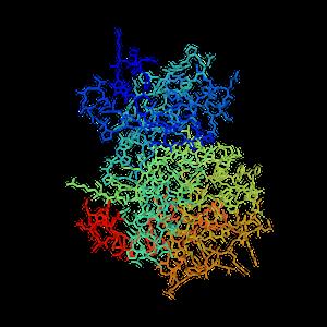 Serine/threonine-protein kinase PIM3